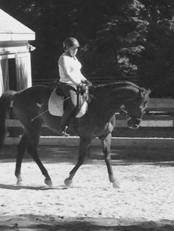 From Barrel Racing to Dressage, re-training